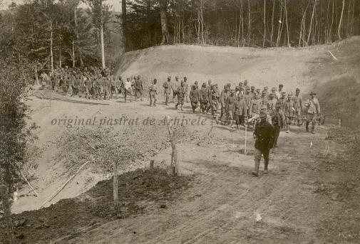 BU-F-01073-1-08751 Coloană de prizonieri austrieci. Muşuroaiele, 1917.08.27 (niv.Document)