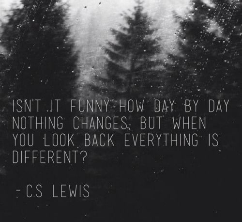 """Isn't it funny how, day by day, nothing changes. But when you look back, everything is different?"" - C.S. Lewis"