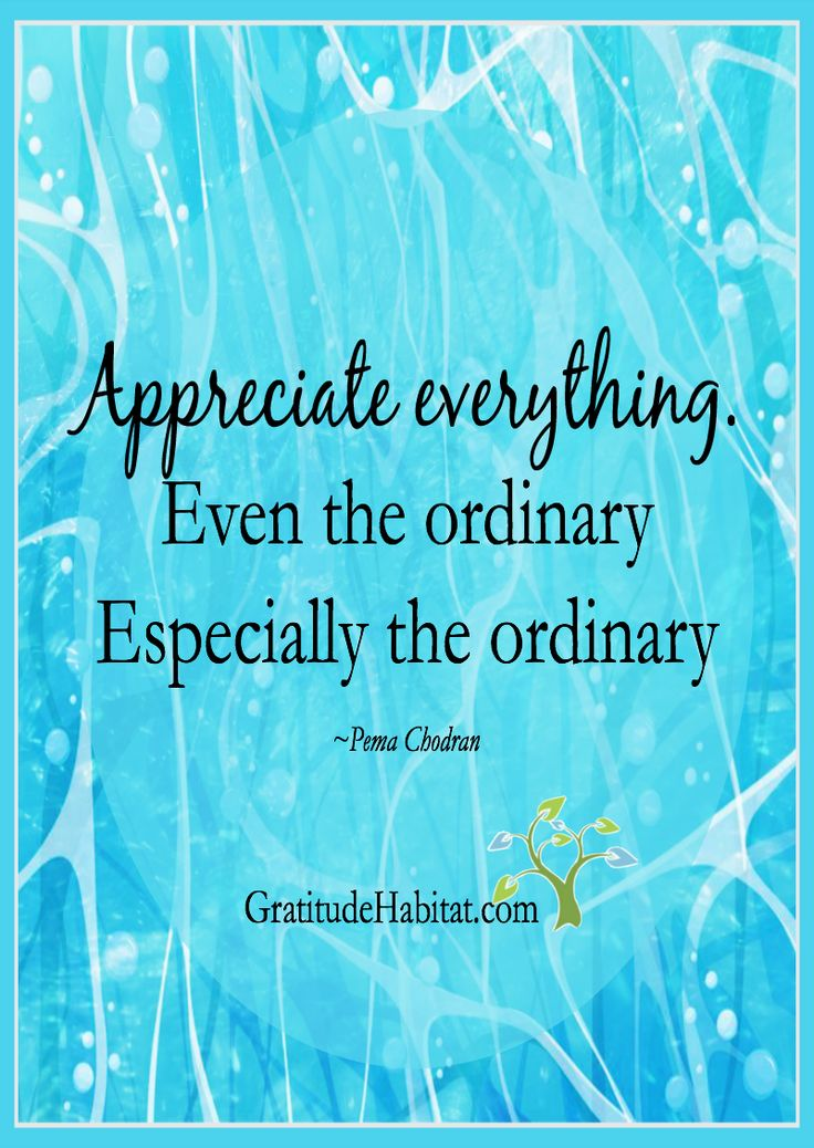 Every Day Gratitude: Water, cool glass in the morning, running water, plumbing, plumbers, showers, for coffee, for tea...Visit us at: www.GratitudeHabi... #appreciate-everything #ordinary #Pema-Chodran: