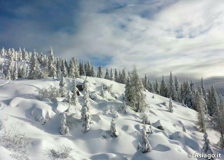 Monte Verena Altopiano di Asiago