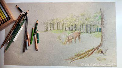raffaelladivaio*illustrazione e creatività: ANCORA BOSCO ancora BOSCO matite e pastelli a olio su carta riciclata grigia -colori in corso- ©raffaelladivaio.com2017