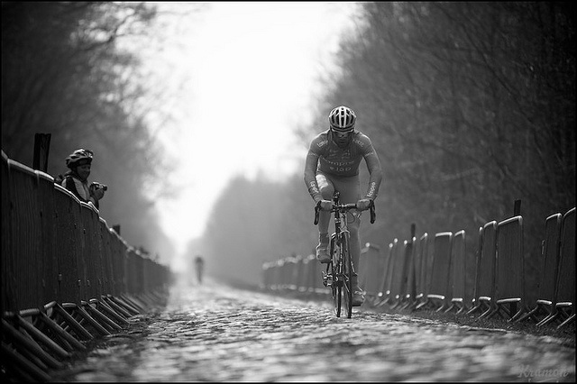 Lampre  by © kristof ramon, via Flickr