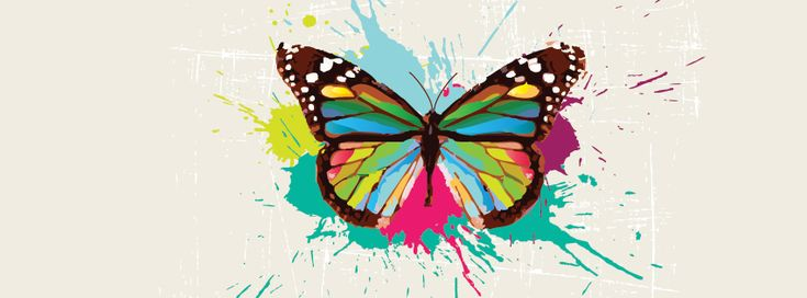 Paint Colored Butterfly Facebook Cover CoverLayout.com