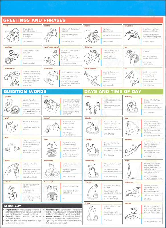 American Sign Language SparkChart | Additional photo (inside page)