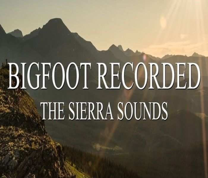 Could Sonic Clues prove the Bigfoot Sierra Sounds are real | Crypto Sightings
