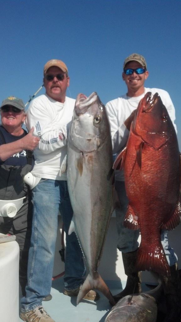 66 best florida charter fishing images on pinterest for Destin shark fishing