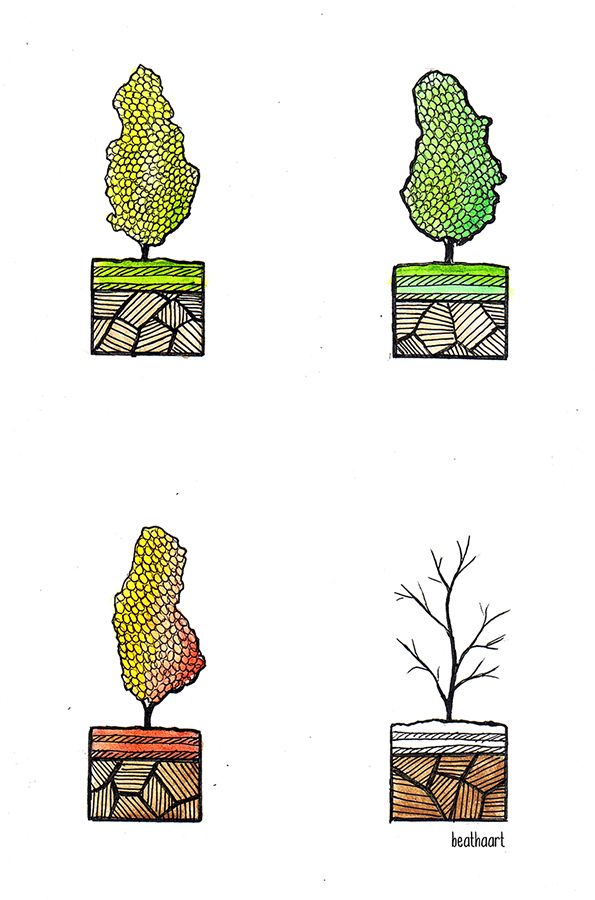 four seasons by eamanee.deviantart.com on @DeviantArt