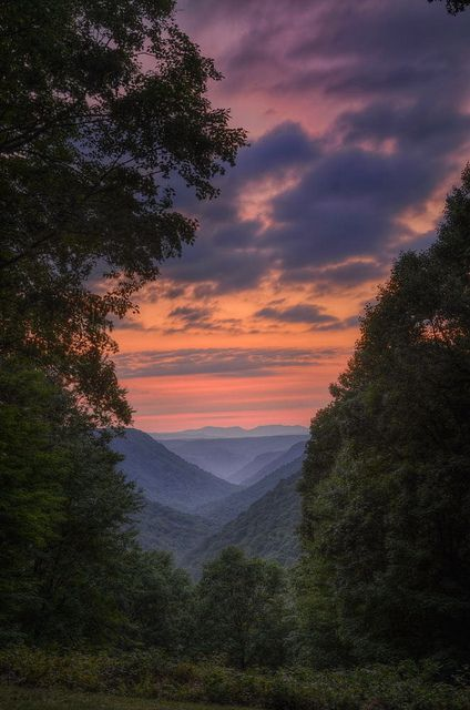 Appalachian Mountains. How I envisioned the view from Jessie and Cade's cabin in Green Bird Cove.