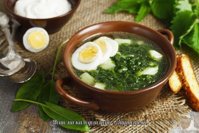 Зеленые щи со щавелем и яйцом | Щавелевый суп, Рецепты ...