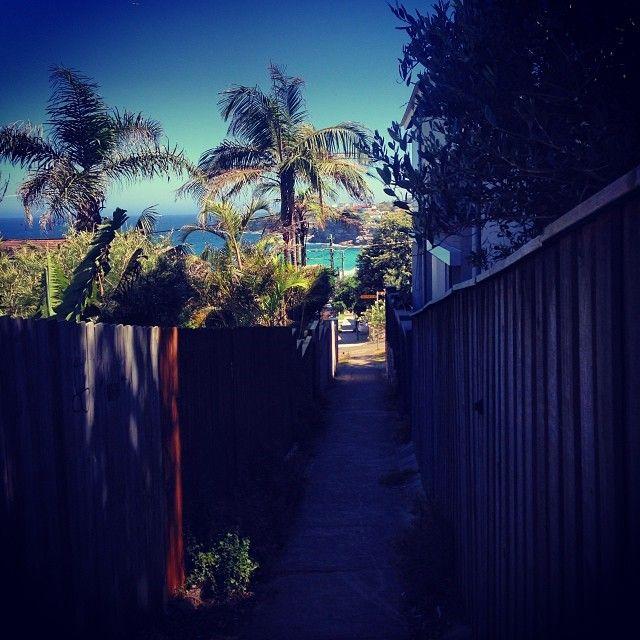 Tamarama alley