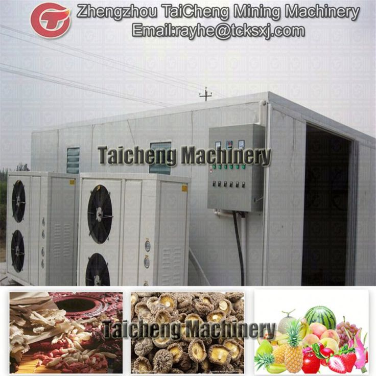 20t/h apple washing and drying machine in Canada