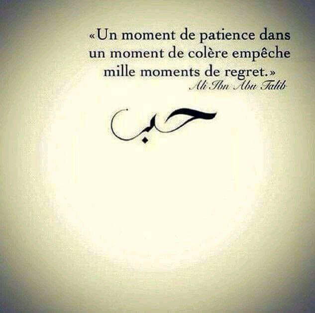 Un moment de patience dans un moment de colère empêche mille moments de regret.  La patience n'étant pas une de mes qualités premières je travaille donc ce point mais en parallèle j'essaye aussi de ne plus me laisser envahir par ce sentiment de colère.  Une minute de colère c'est soixante secondes de sérénité en moins.
