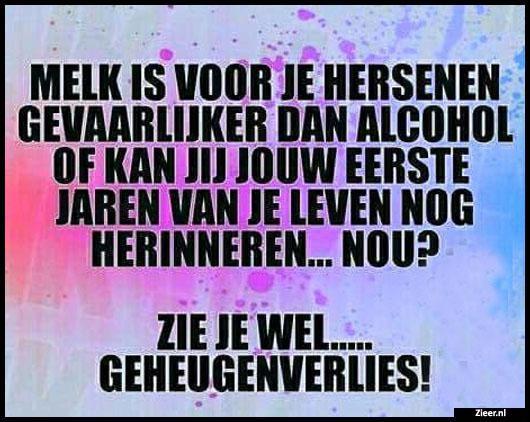 Citaten Nederlands Grappig : Beste ideeën over grappige citaat foto s op pinterest