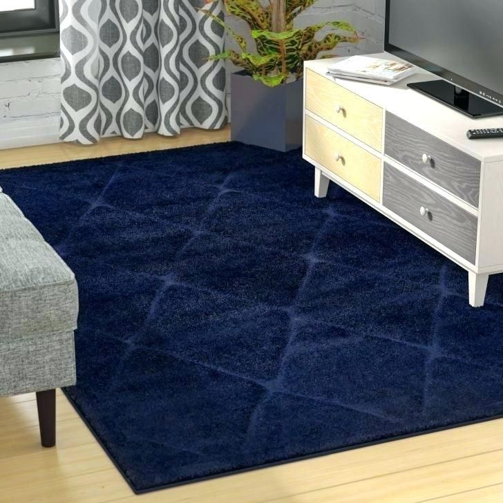 Fine Navy Blue Area Rug 5x7 Snapshots Amazing Navy Blue Area Rug 5x7 Or Navy Area Rug Medium Size Of Area Shag A Blue Outdoor Rug Navy Blue Rug White Shag