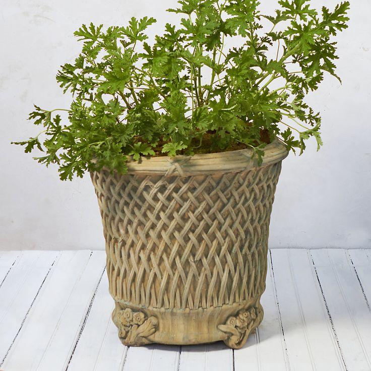 Italianate Lattice Planter 20 best pots images
