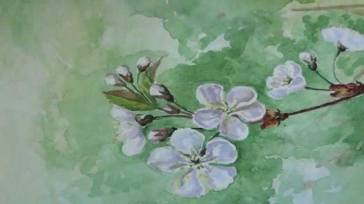 как нарисовать цветы вишни/How to paint cherry blossom