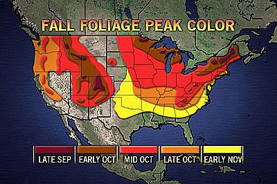 Fall Foliage: Vibrant Display In Mid-Atlantic Region - Travel Gal