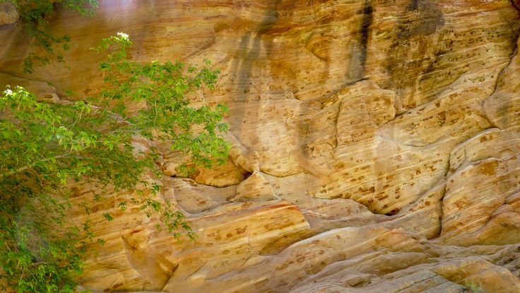 Hidden Canyon – Zion von der schönsten Seite