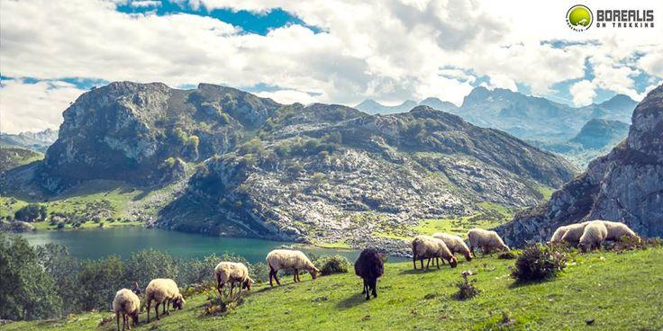 BOREALIS   Trekking nos Picos da Europa – classic