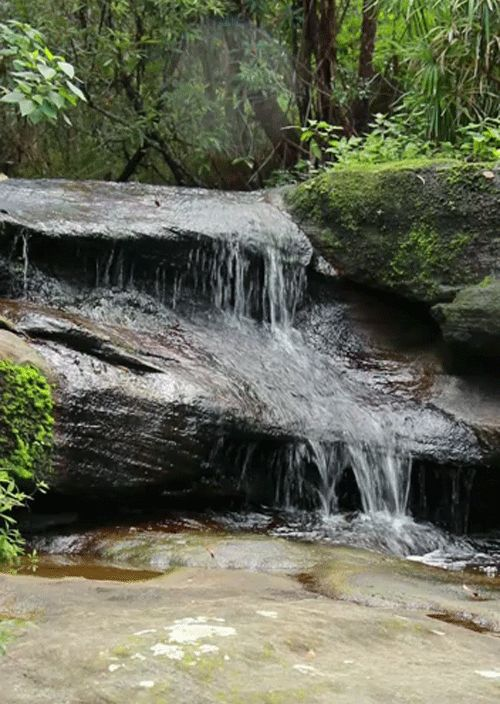 Mountain Waterfall!  Peaceful.  I want this in my living room...somehow I will get it.
