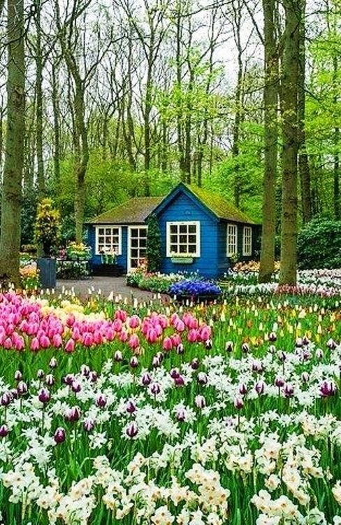 Spring garden by a blue cottage gardens pinterest for Beautiful small house with garden