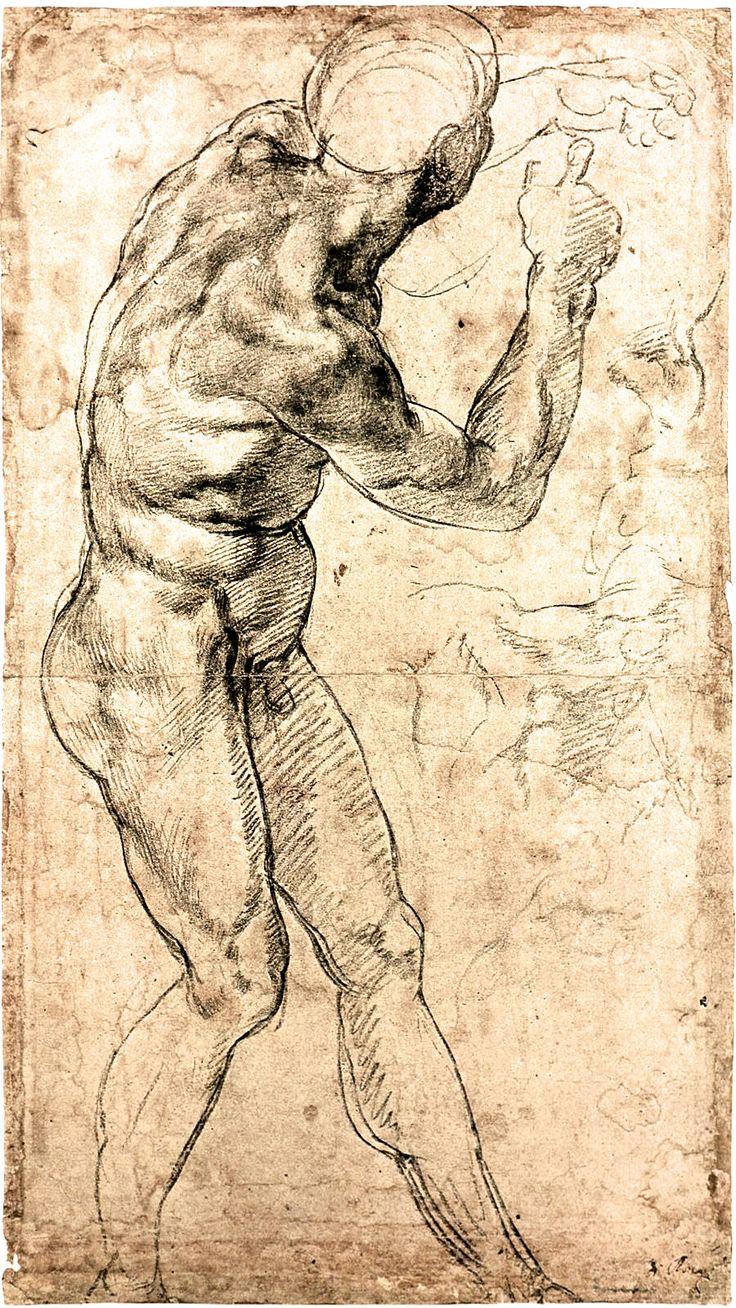 Michelangelo on twitter