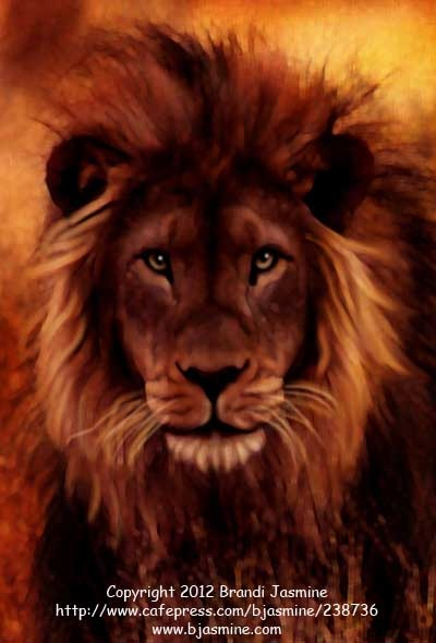 A #bigcat for #caturday ... A regal male African lion rests in golden grasses in this photo-illustration by Brandi Jasmine. http://www.cafepress.com/bjasmine/238736