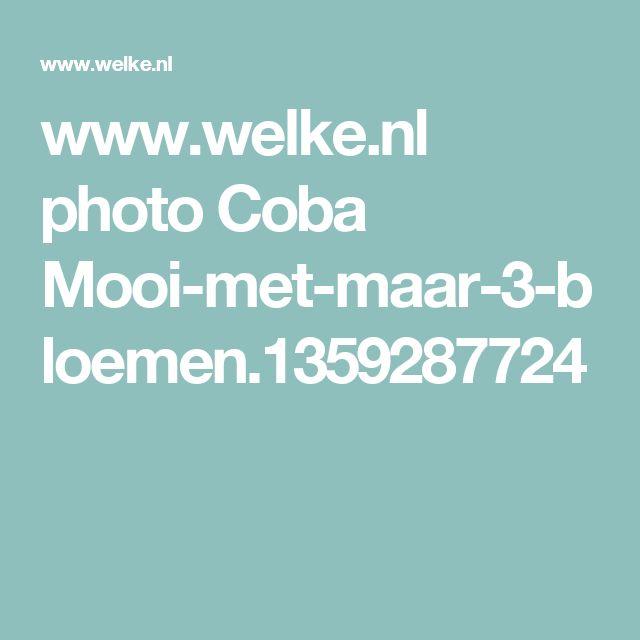 www.welke.nl photo Coba Mooi-met-maar-3-bloemen.1359287724
