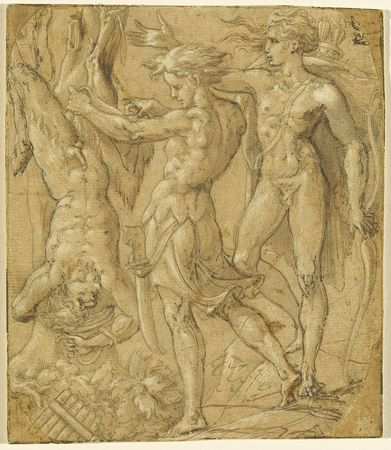Bernardino Campi, The Flaying of Marsyas. Black ink with brown wash, heightened with white gouache, on brown prepared laid paper, sheet: 16.5 x 14.1 cm (6 1/2 x 5 9/16 in.). Joseph F. McCrindle Collection
