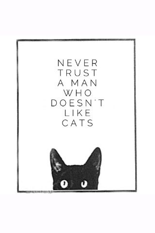 Never trust a man who doesn't like cats. O.M.G. If you don't trust your pets' opinions, you deserve the crap you get. Our own guts know, but our hearts lie. Guess what we follow? Trust your pets when in doubt!