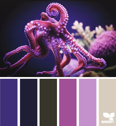 Underwater Hues - http://design-seeds.com/index.php/home/entry/underwater-hues2