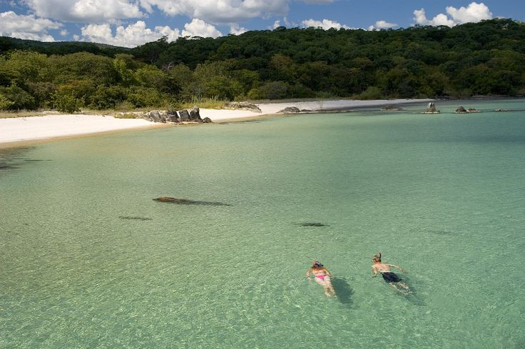 Anyone up for snorkelling? http://triptide.co.za/