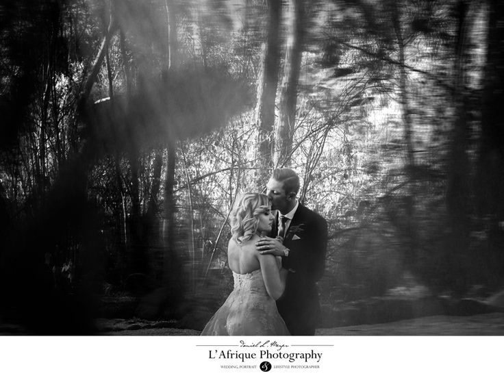 a Stunning photo of the couple into  the woods photo by World Elite Photographer Daniel L Meyer (L'Afrique Photography)