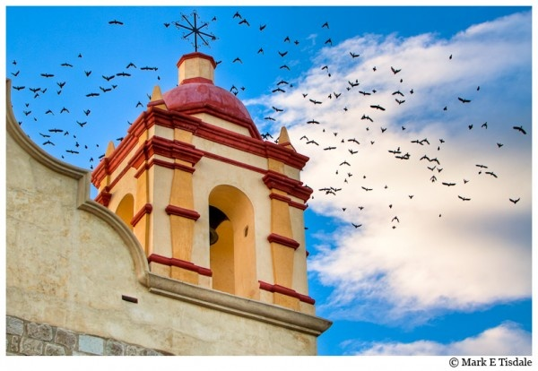 Photo of birds in flight over a church tower in Oaxaca Mexico: Magic Belle, Church Towers, Mark Tisdale, Vibes Artworks, Oaxaca Mexico, Belle Towers, American Vibes, Birds In Flight, Latin American