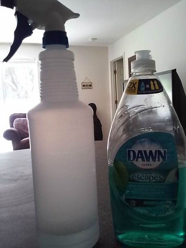 To keep wasps from setting up a home near your front door or around your home - mix 2-3 tablespoons of Dawn dishsoap and about 2-3 cups of water. Put into a spray bottle, shake and that's it. Spray where they keep coming back to, to make a new nest. This will also kill them and drop them like a hat.