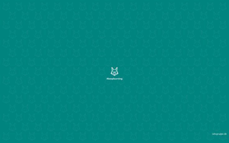 Was verrät dein Wallpaper über dich? Neuer Lieblingshintergrund für deinen Bürobildschirm gesucht? Unser Wallpaper-Guide mit schrägen Vögeln und schönen Füchsen zum Download. #hallobüro #wallpaper #fox #fuchs #desktop #petrol #keeplearning