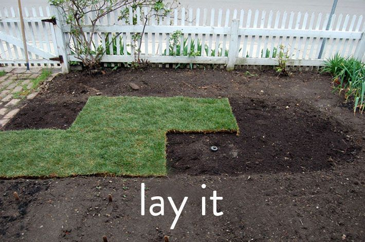 How to Lay Sod. A Step by Step Guide to the Perfect Lawn