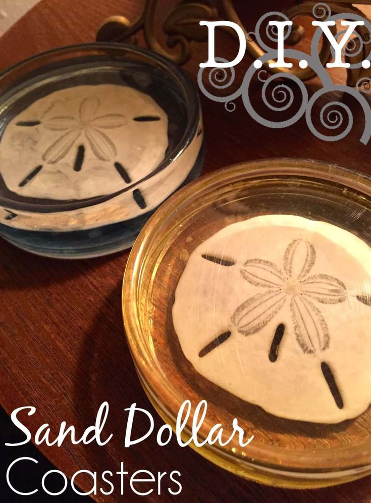 DIY Sand Dollar Seashell Resin Coasters