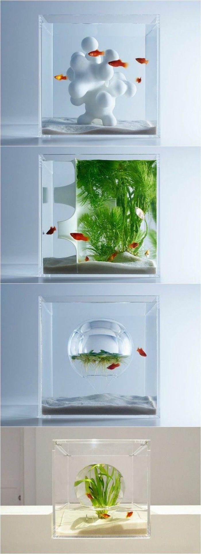 die besten 25 kleines aquarium ideen auf pinterest. Black Bedroom Furniture Sets. Home Design Ideas