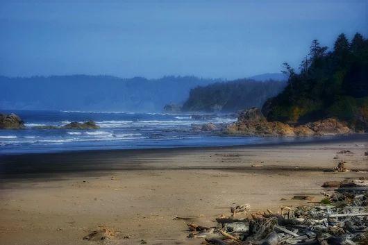 Northwest Washington Coast