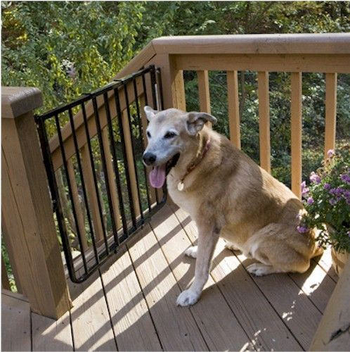 Stairway Special Outdoor Pet Dog Gate - White / Brown / Black
