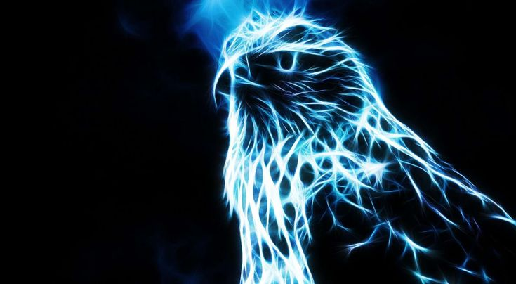 cool eagle wallpapers - http://jazzwallpaper.com/cool-eagle-wallpapers  HD Wallpapers