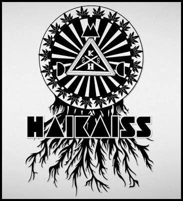 Resultado de imagem para haikaiss logo