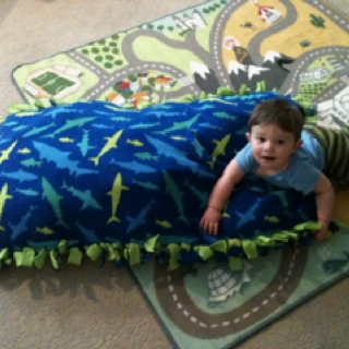 210 Best Images About No Sew Fleece Blanket On Pinterest