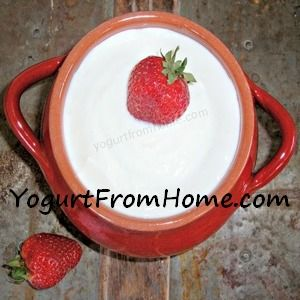 Cooking With Yogurt: Essential Tips like how to stabilize so it does not curdle when cooking!