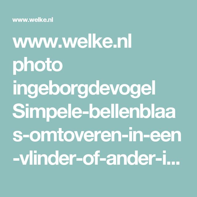 www.welke.nl photo ingeborgdevogel Simpele-bellenblaas-omtoveren-in-een-vlinder-of-ander-insect-Leuk.1376856775