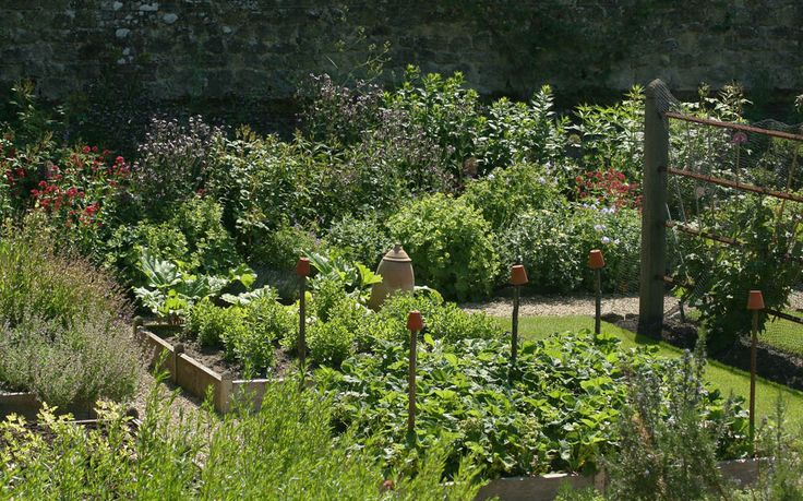 Image Result For Arne Maynard Vegetable Garden