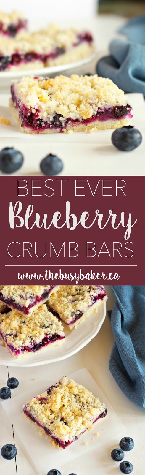 These Blueberry Crumb Bars are the perfect sweet snack! Recipe from www.thebusybaker.ca!