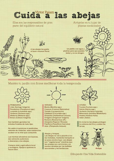 Cuida a las abejas - Víctor Paiam