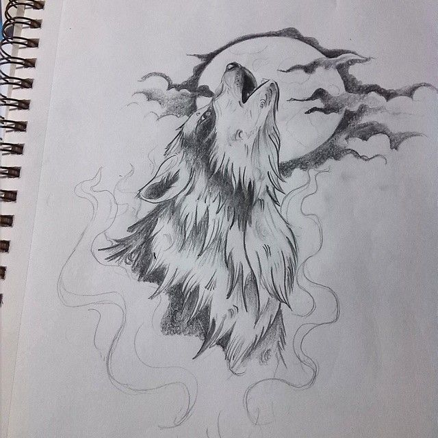 Best 25 Lobos a lapiz ideas on Pinterest  Lobo dibujo a lapiz
